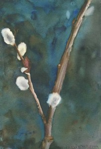 "Pussy Willow 3 11"" x 7"""
